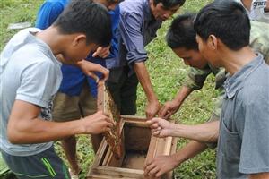 Tập huấn nuôi ong